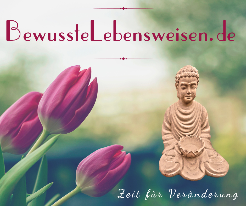 Meditation lernen, Bewusstsein, Kohärenz, Joe Dispenza, meditieren,