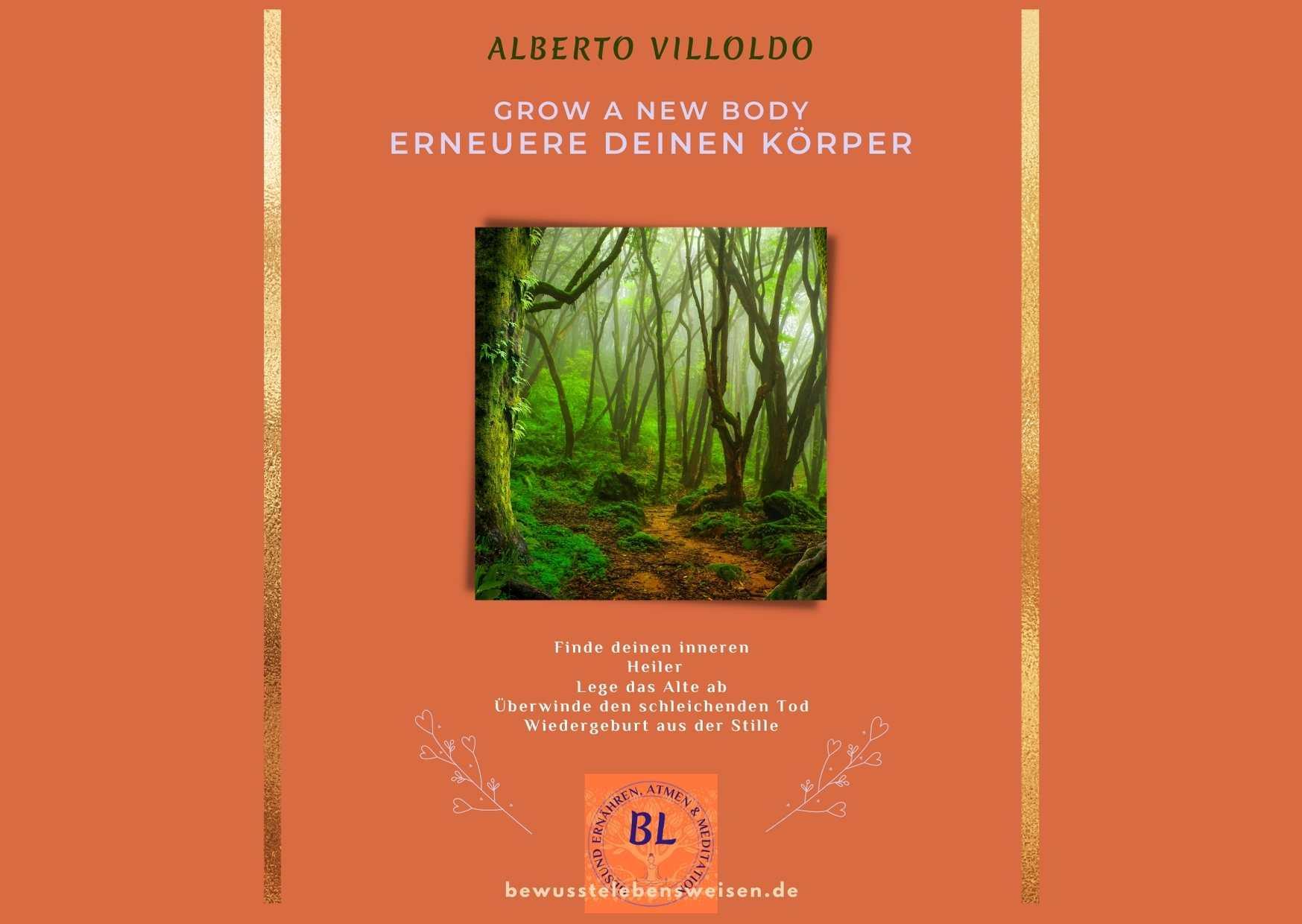 Alberto Villoldo erneuere deinen Körper Meditation und Nahrungsergänzung für Entgiftung und Heilung