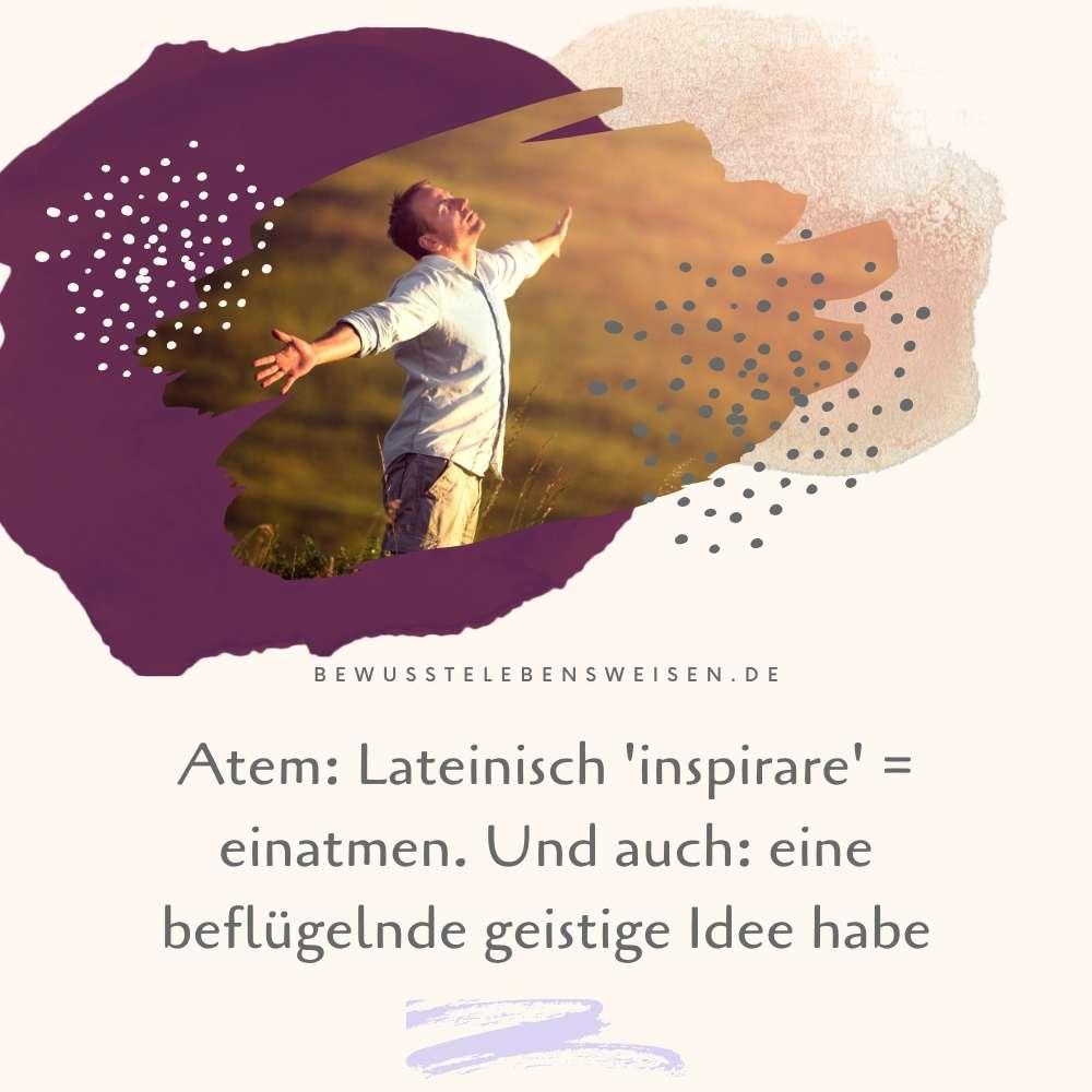 Read more about the article Weniger atmen und länger leben?