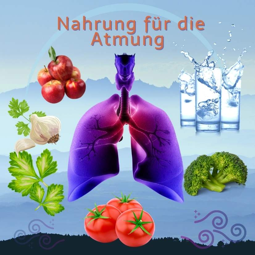 Read more about the article Nahrung für die Atmung