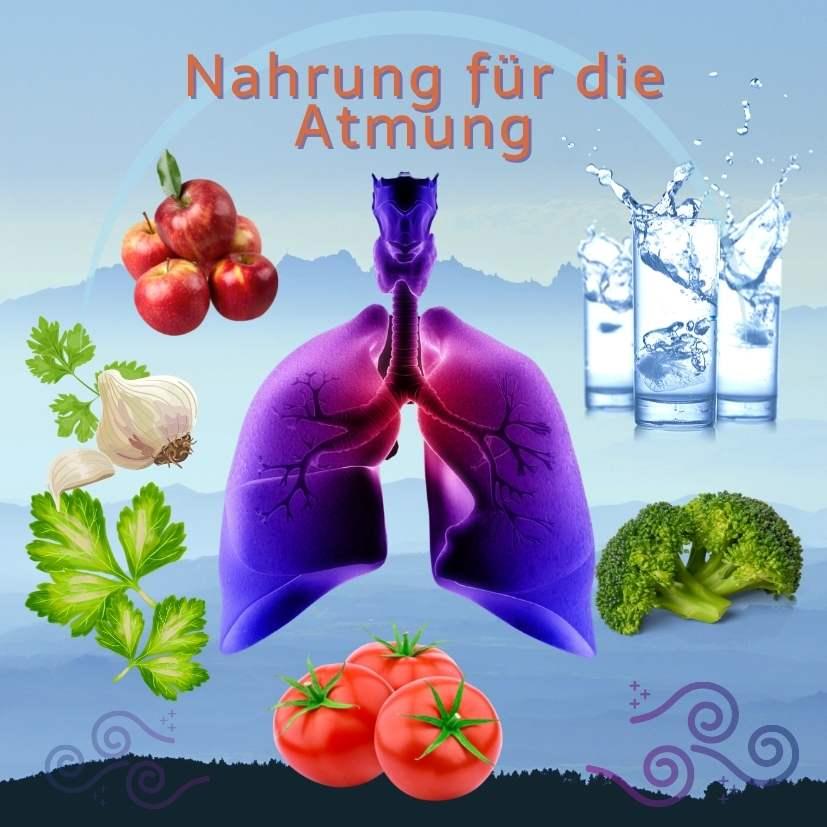 Nahrung für die Atmung: Wasser, Petersilie, Knoblauch, Brokkoli, Tomaten, Äpfel